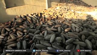 Download Iraqi forces tour remains of ISIL bomb factory near Mosul Video