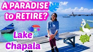 Download Voted #1 place to RETIRE in MEXICO: LAKE Chapala 😍🌮🇲🇽 Video
