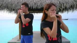 Download Bruno Mars - Just The Way You Are (Aiden N Evelyn harmonica cover) Video