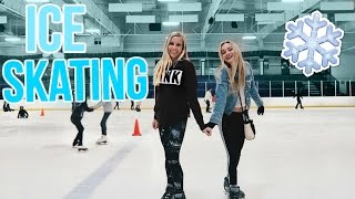 Download Floridians Go Ice Skating! Video