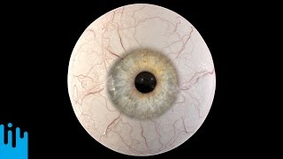 Download EYEBALL RECONSTRUCTION - Mind Blow #110 Video