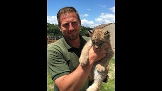 Download Animal Adventures with Jordan: Canadian Lynx Video