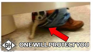 Download 1 Will Protect You. The Rest Will Attack. Video