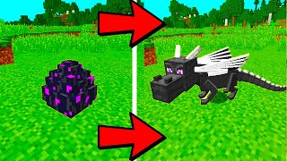 Download How to Hatch The Ender Dragon Egg in Minecraft | 100% Works! Video