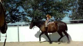 Download Sianna & Cessna - 3 year old girl riding 16.3 hand horse Video