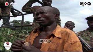 Download Kakamatwa na Bangi Kagera lakini alivyojitetea kila mtu akacheka Video