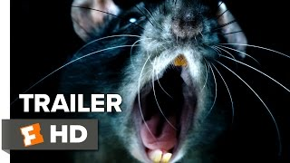 Download Rats Official Trailer 1 (2016) - Documentary Video