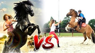 Download Paardenfilms vs de realiteit! | met Felinehoi Video