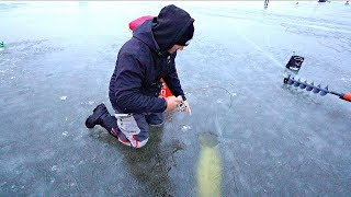 Download Unexpected WORLD RECORD Catch on 2 POUND TEST LINE?!?! Video