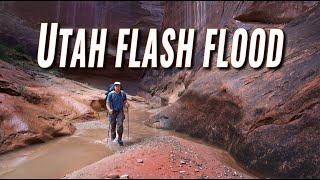 Download Flash Floods in May? (Halls Creek Narrows, Utah) Video