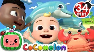 Download Sea Animal Song + More Nursery Rhymes & Kids Songs - CoCoMelon Video