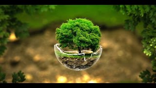 Download Amazing Nature Videos Video