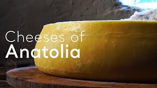Download Cheeses of Anatolia Video