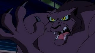 Download What's New Scooby Doo? Cat Creature Attack Video