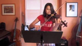Download Nyan cat violin cover Video