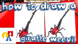 Download How To Draw A Giraffe Beetle Video