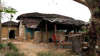 Download Traditional mud house at Narna village, Madhya Pradesh Video