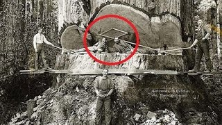 Download 32 SHOCKING RARE HISTORICAL PHOTOS THAT'LL BLOW YOUR MIND Video