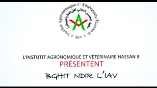 Download BGHIT NDIR L'IAV Video