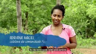 Download Programa Água Brasil - bacia do Guariroba (MS) Video