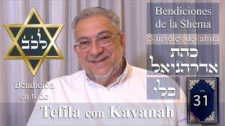 Download Kabbalah: la Tefila con Kavanah - clase 31 Bendiciones de la Shema Video