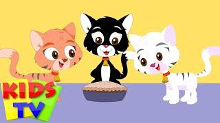 Download Kids TV Nursery Rhymes - Three Little Kittens | Popular nursery rhyme for kids | kids songs Video