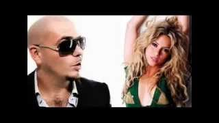 Download Pitbull megamix Video