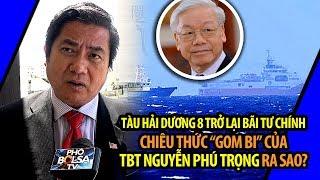 Download HD-8 trở lại Bãi Tư Chính và chiêu thức ″gom bi″ của TBT Nguyễn Phú Trọng Video