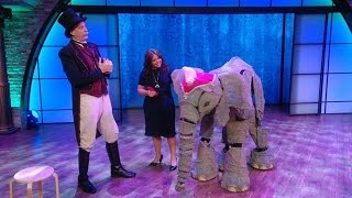 Download Travel in Time With Circus 1903's Adorable 'Elephants' Video