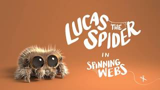 Download Lucas the Spider - Spinning Webs Video