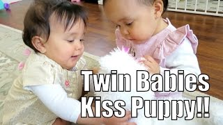 Download Twin Babies Kiss Puppy!! - May 02, 2015 - ItsJudysLife Vlogs Video