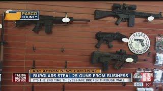 Download Burglars break into Wesley Chapel gun store Video