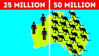 Download 50 Facts About Australia That Break All the Stereotypes Video