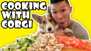 Download COOKING WITH CORGI DOG || Life After College: Ep. 520 Video