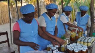 Download Renforcement des capacités de production des communautés vulnérables au Sud de Madagascar Video