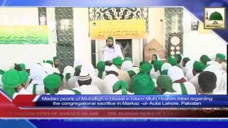 Download News Clip - 20 Sept - Maulana Mufti Hashim Attari Presents Madani Pearls Video