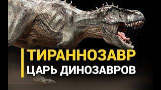 Download Тираннозавр. Царь динозавров Video