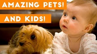 Download Most Amazing 1 Hour of Cute Kids And Pets 2018 | Funny Pet Videos! Video