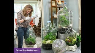 Download SEALED BOTTLE GARDENS: Step by Step Video