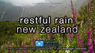 Download ″Restful Rain in New Zealand's Milford Sound″ 1 HR 4K Nature Relaxation™ Ambient UHD Film Video