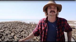 Download Sharks, Kangaroos & Campfires (La Vaga Goes Bush) - Part 2 Video
