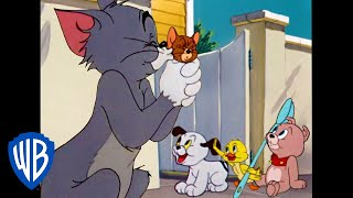 Download Tom & Jerry | Family Love | Classic Cartoon Compilation | WB Kids Video