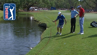 Download Ian Poulter's reptile rendezvous at RBC Heritage Video