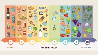 Download Top 10 Alkaline Foods You Should Be Eating Everyday Video