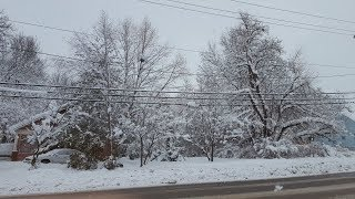 Download Massive winter storm kills 7 across the Midwest Video
