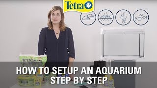 Download How to set up an aquarium   Fish tank setup step by step Video