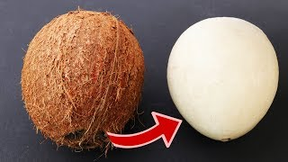 Download How to remove COCONUT Flesh From Shell, 2 different ways Video