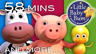 Download Old MacDonald Had A Farm | Little Baby Bum | Nursery Rhymes for Babies | Videos for Kids Video