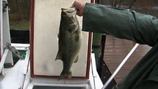 Download Stocking a Reborn Lake with 560 Fish and 7 Pound Bass Video