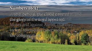 Download The Believer's Authority, Week 3, Day 5 -The Gospel Truth Video